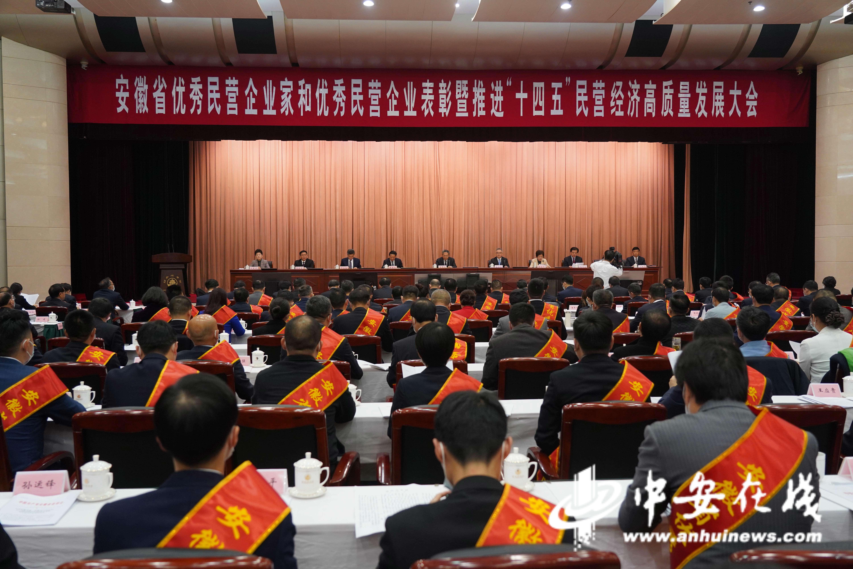 安徽多次召开高规格大会表彰优秀民营企业、民营企业家.JPG